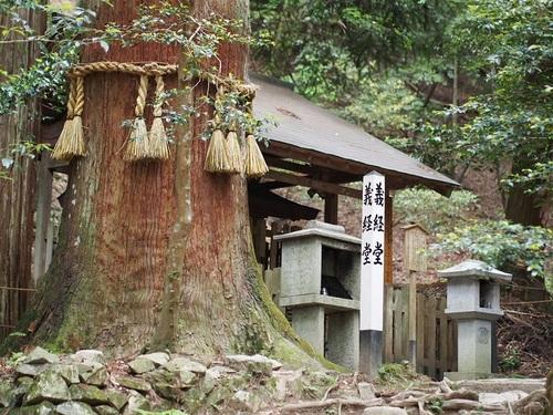 yoshitsunedou.jpg
