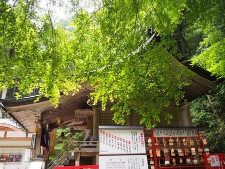 yukijinjya_19.jpg